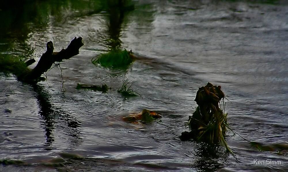 The Dead Flood by Kenart