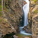 Chasm Falls by Gary Lengyel