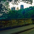 Durham Cathedral, Summer Evening 11 by Priscilla Turner