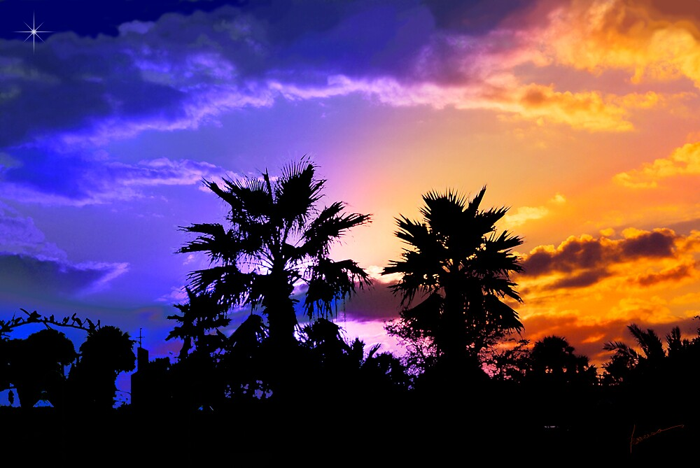 Tropical Nightfall by Francesa