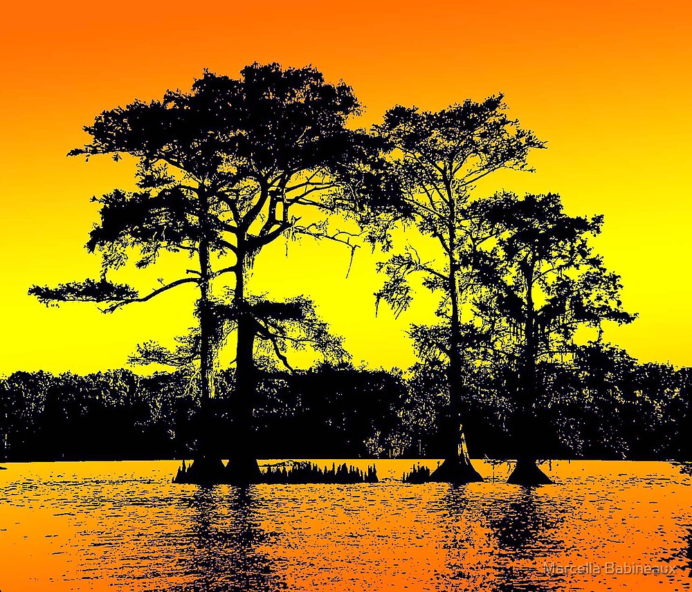 Cypress Tree Silhouettes by Marcella Babineaux