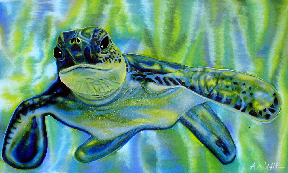 Turtle by Anthony Middleton