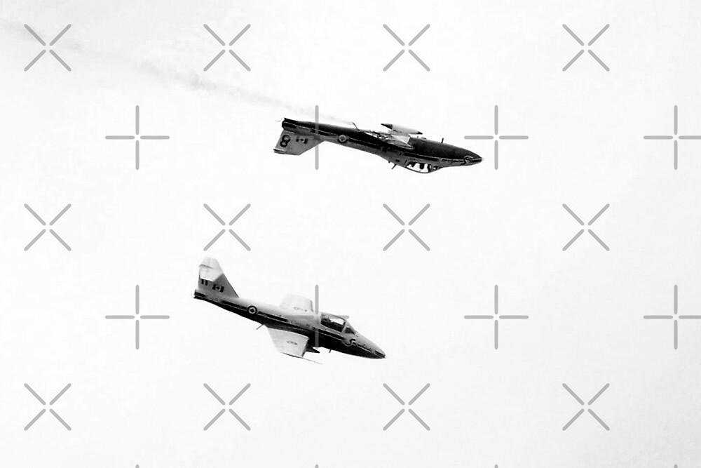 Snowbirds by Angela E.L. Clements