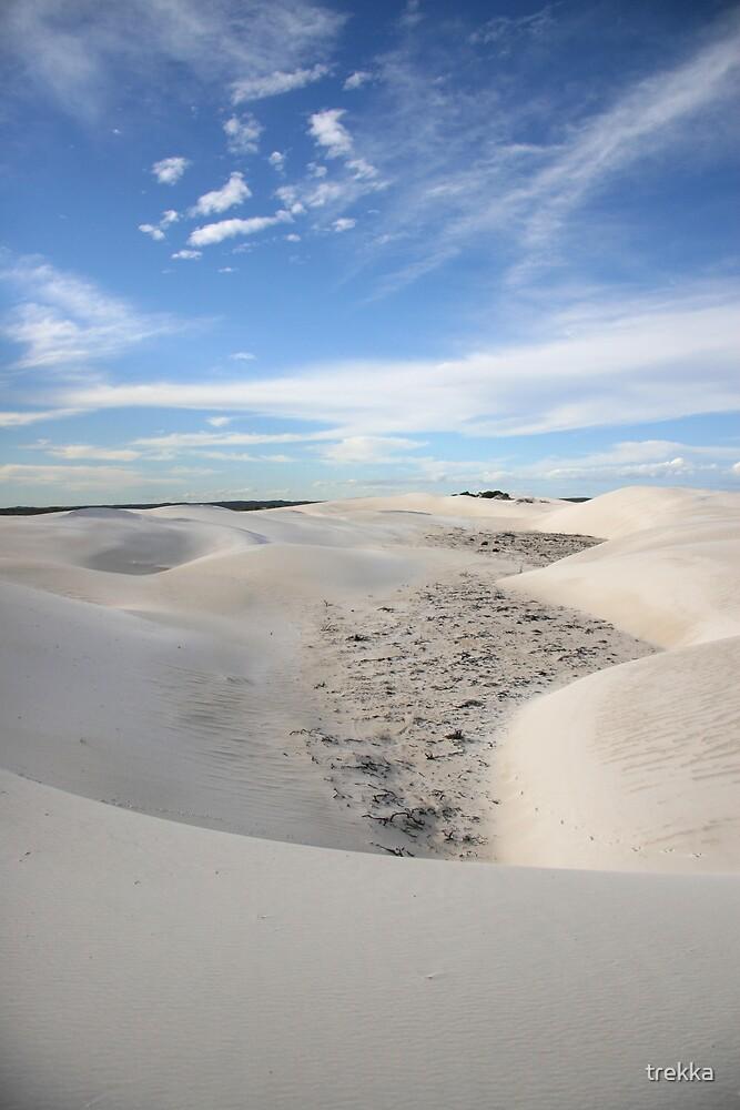 Rolling Sands by trekka