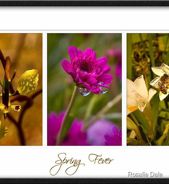 Spring Fever . . . by Rosalie Dale