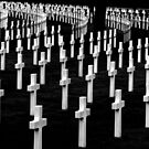 The American Cemetery by Tony Hadfield