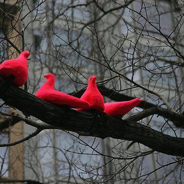 Pink Doves by trekka