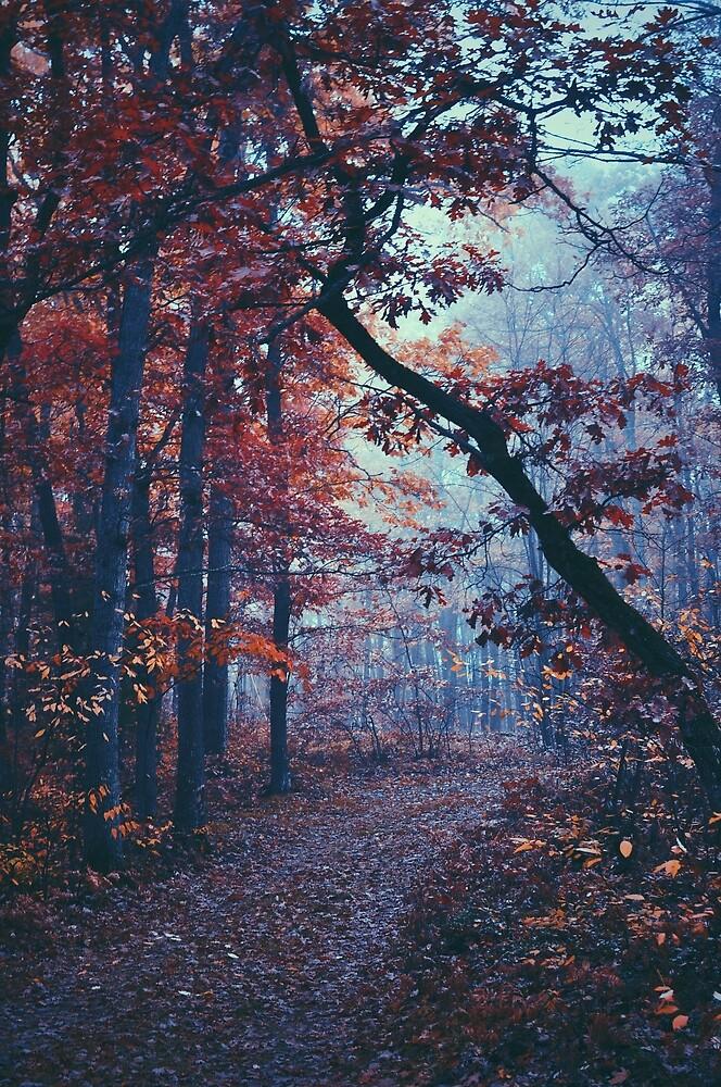 Haunted Autumn  by showmedarkness