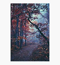 Haunted Autumn  Photographic Print