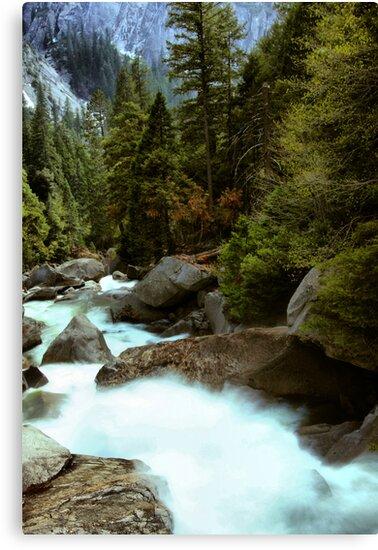 Downstream  by Varinia   - Globalphotos