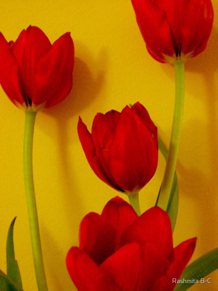 Red by Rashmita B-C