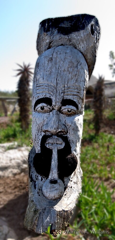 The Log Face by Warren. A. Williams