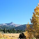 Autumn Colors in the Sierra by doubleheader