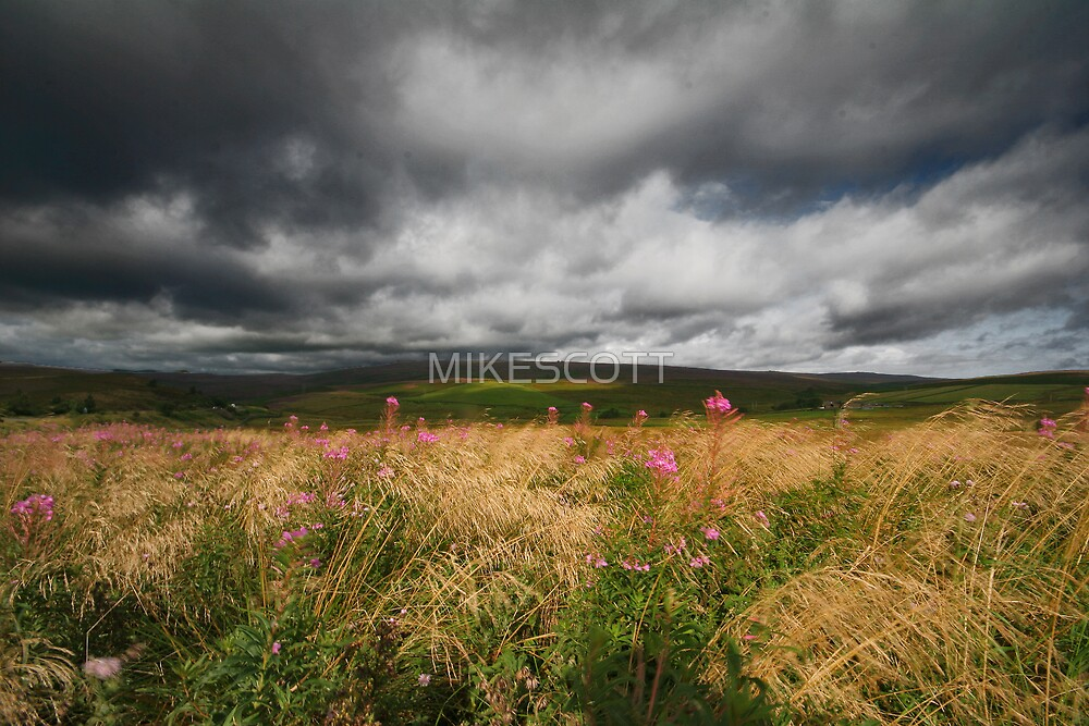 STORM ON STRINES MOOR by MIKESCOTT