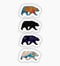 climate bears Sticker