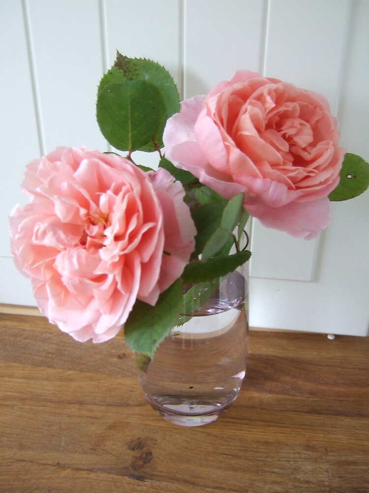 Peachy pink roses by secretbutterfly
