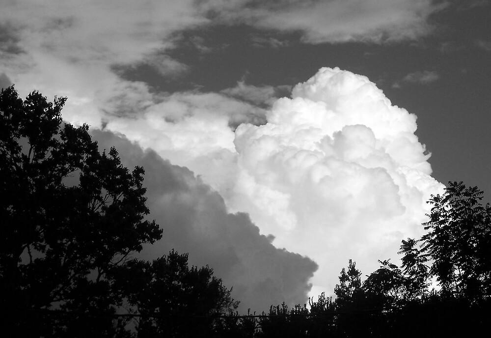 Clouds by mekea