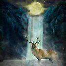 Spirrit animal by MeyLolita