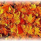 Autumn Leaves by Richard-Gary Butler