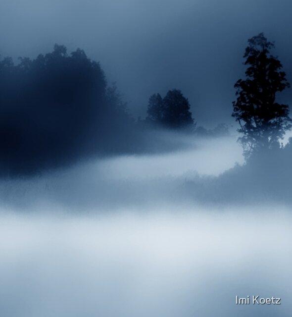 Foggy Lake Matheson.......Before Sunrise......New Zealand by Imi Koetz