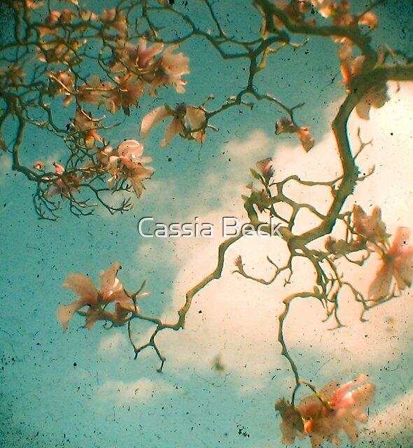Magnolia Falls by Cassia Beck