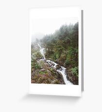 Misty Woodland, over a waterfall  Greeting Card