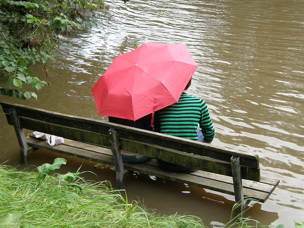 Village flood, Ponteland, Northumberland, UK by jay12