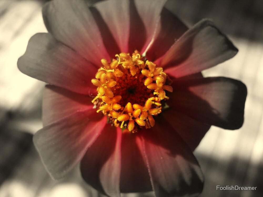 Blooming fade by FoolishDreamer