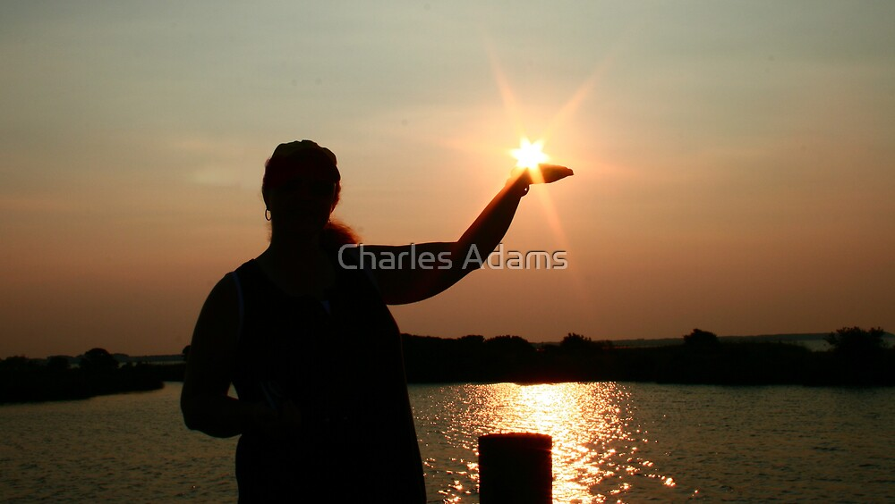 Hold the Sun by Charles Adams