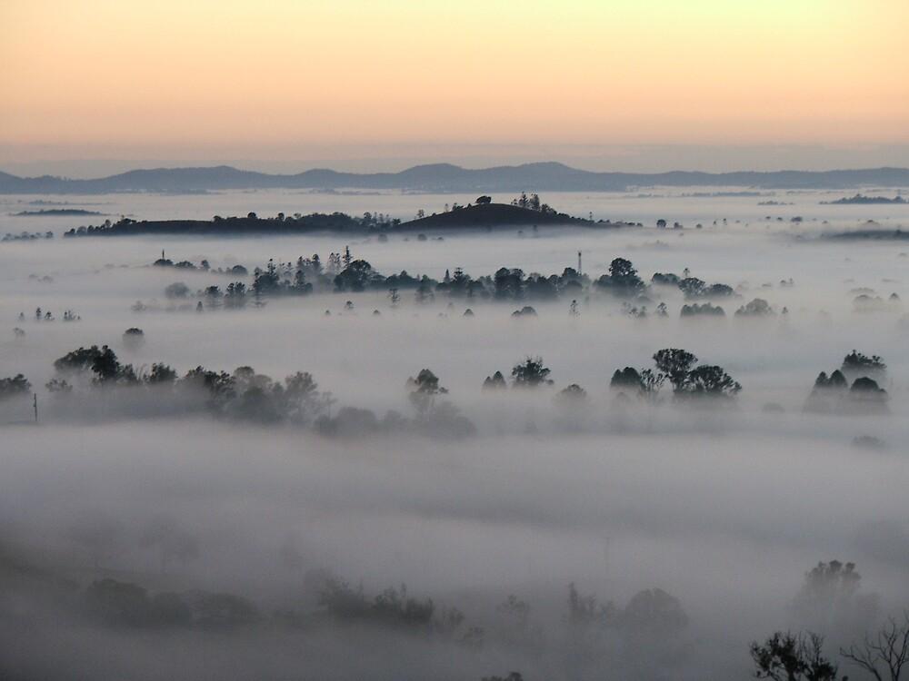 Foggy Day Break by Cherie Carlson