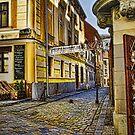 Ancient (?) Bratislava Walk by Ted Byrne