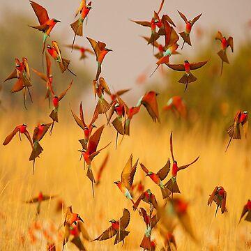 Birds In Flight by Tee-Art