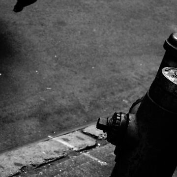 New York Fire Hydrant by Dyceus