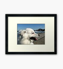 Sylvie at Narragansett Beach Seawall Framed Print