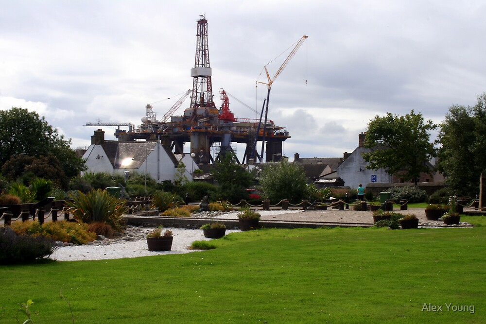 Natal Gardens, Invergordon, North East Scotland. by Alex Young
