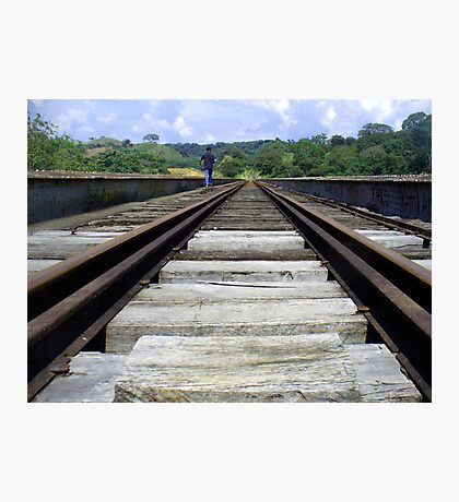 Train to the Jungle Photographic Print