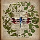 modern leaves botanical art vintage french dragonfly by lfang77