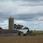 Buckeye Barn by Monnie Ryan