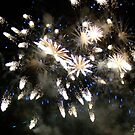 Firework by fairielights