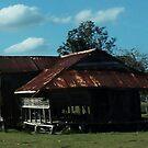 An abondened farmhouse near Grafton by myraj