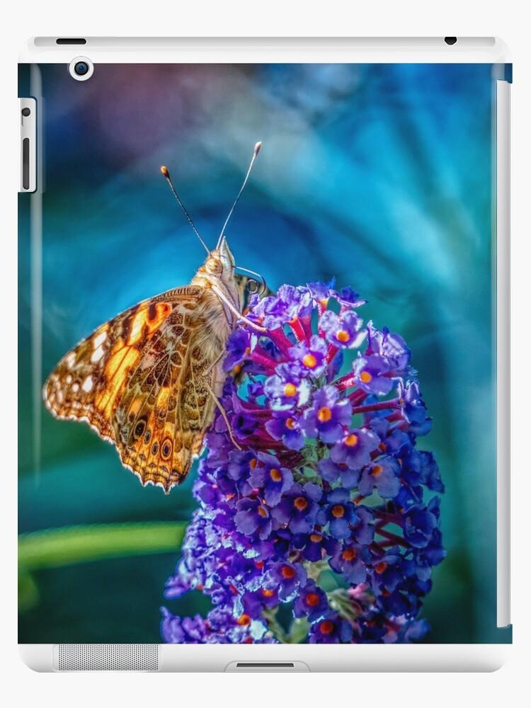 Butterfly by Art Dream Studio