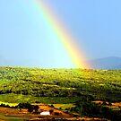 Rainbow land  by natureloving