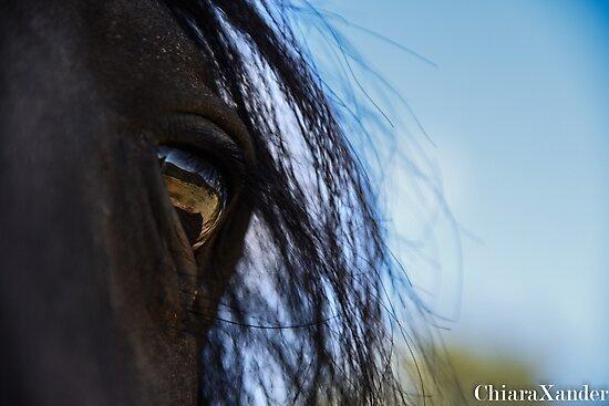 Black eye by ChiaraXander