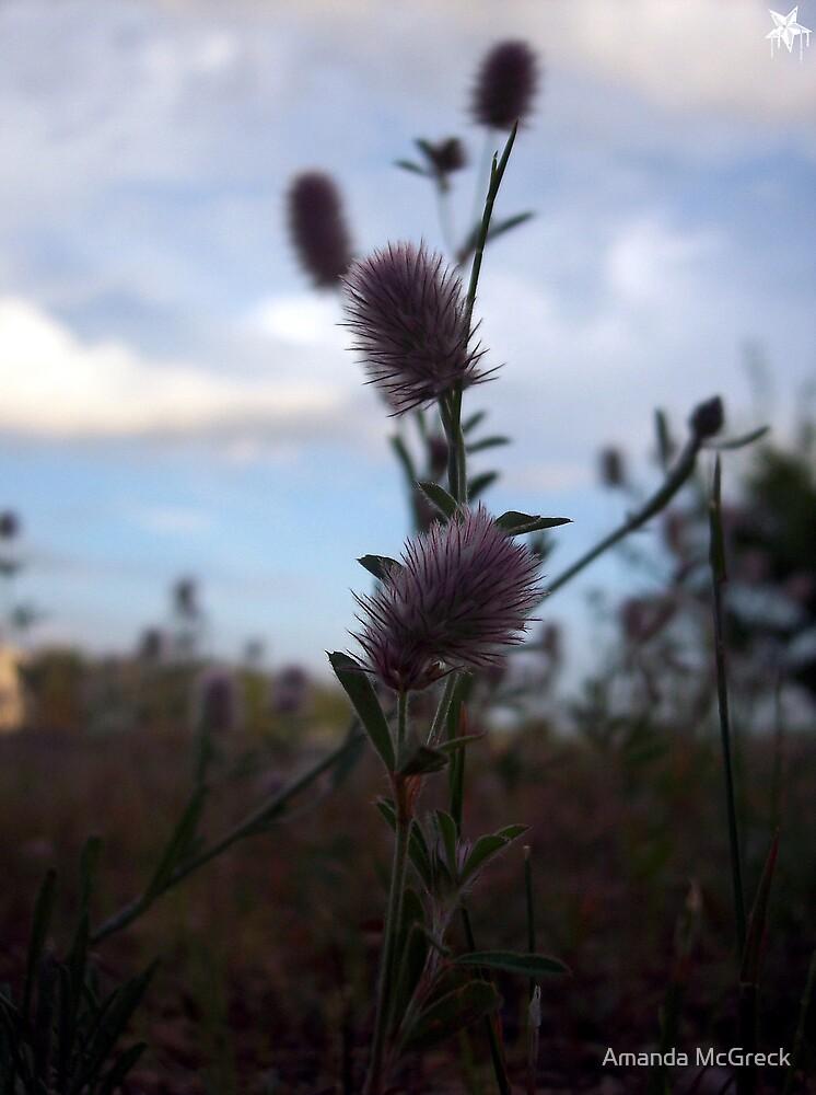 Weeds by Amanda McGreck