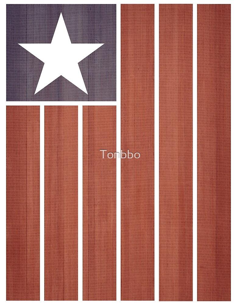 Stars and Stripes (Folk Art) by Tonbbo
