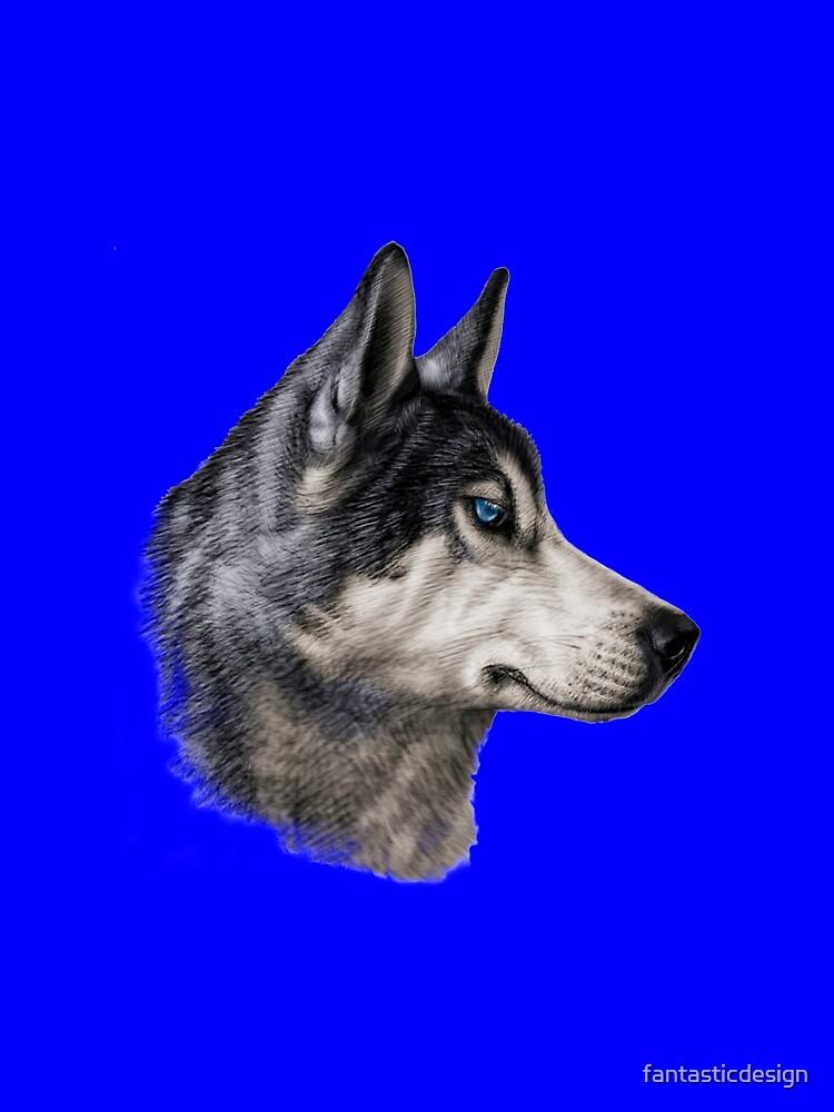 Husky Dog Athletic, Intelligent Dog by fantasticdesign