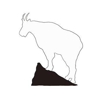 Rocky Mountain Goat by portraitlady