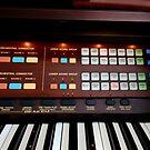 Entertainment Organ von BlueMoonRose