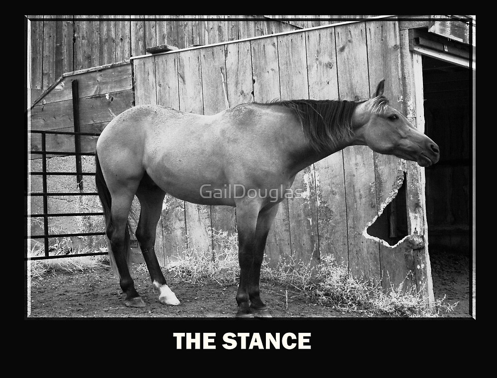 The Stance by GailDouglas