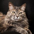 Chloe poses for a portrait by Lynn Starner